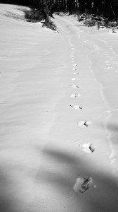 Spuren im Schnee - jugendlicher Leichtsinn