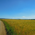 Trailabenteuer Waldstein