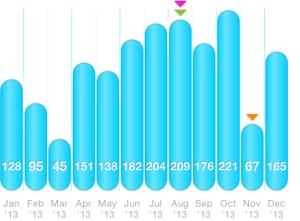 Monatskilometer 2013