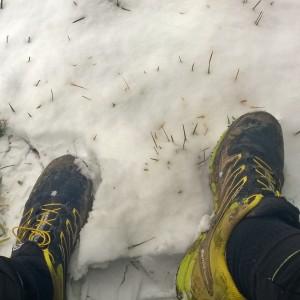 Oberpfälzer Winterlauf Challenge