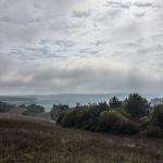 Maintal-Trail 2014 – Weinberg ohne Schnecke