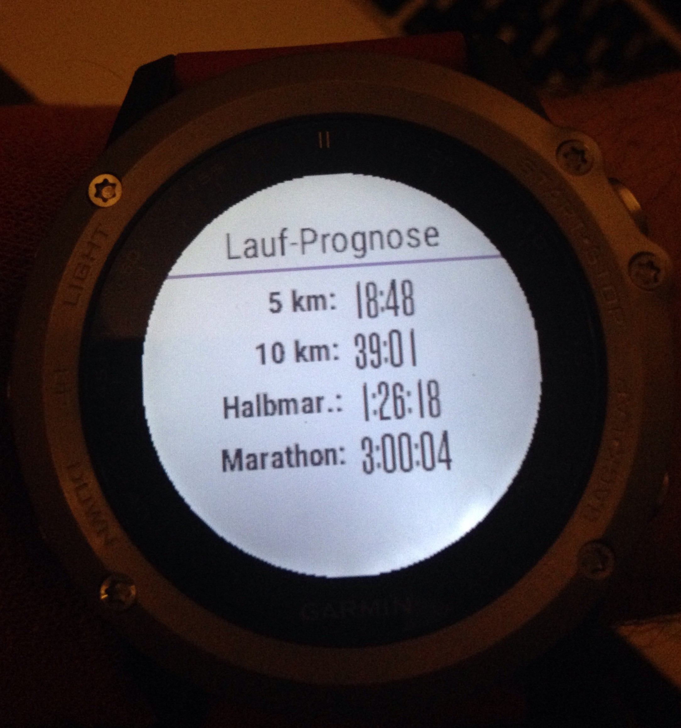 Garmin Fenix 3, Smartwatch, GPS, Laufuhr, Review, Test